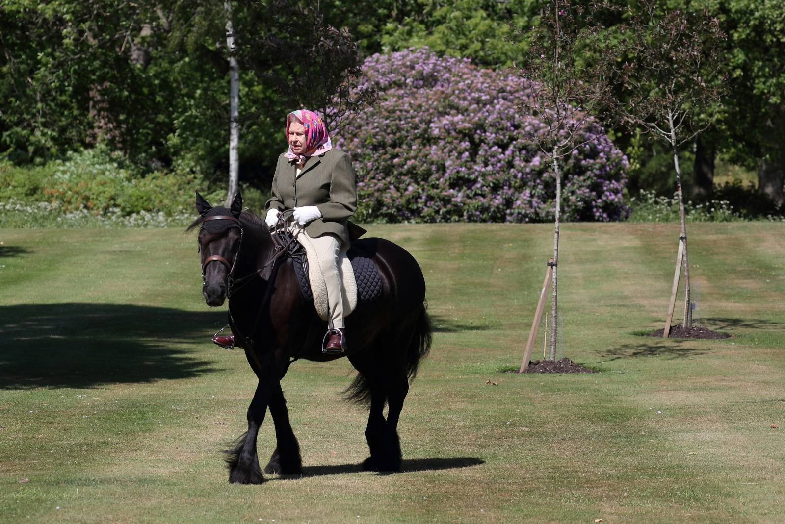 Britain's Queen Elizabeth II rides Balmoral Fern, a 14-year-old Fell pony, in Windsor Home Park