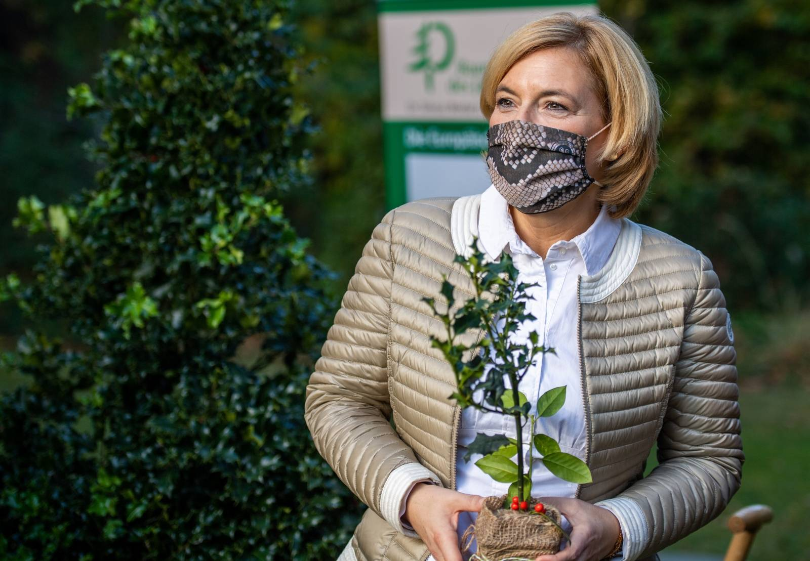 """Holly is the """"Tree of the Year 2021"""""""