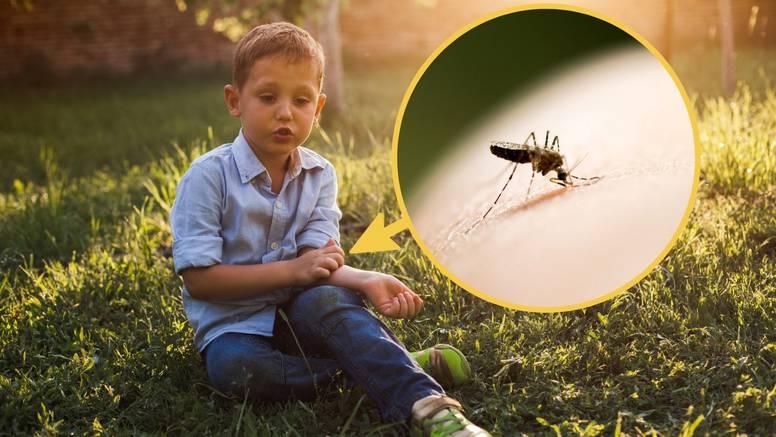 Trikovi kako zaustaviti svrab nakon što vas ubode komarac