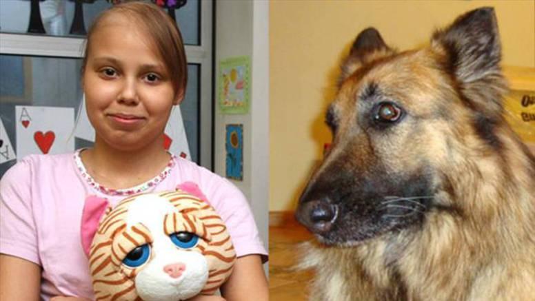 Nevjerojatno: Pas je 'preuzeo' leukemiju od bolesne vlasnice