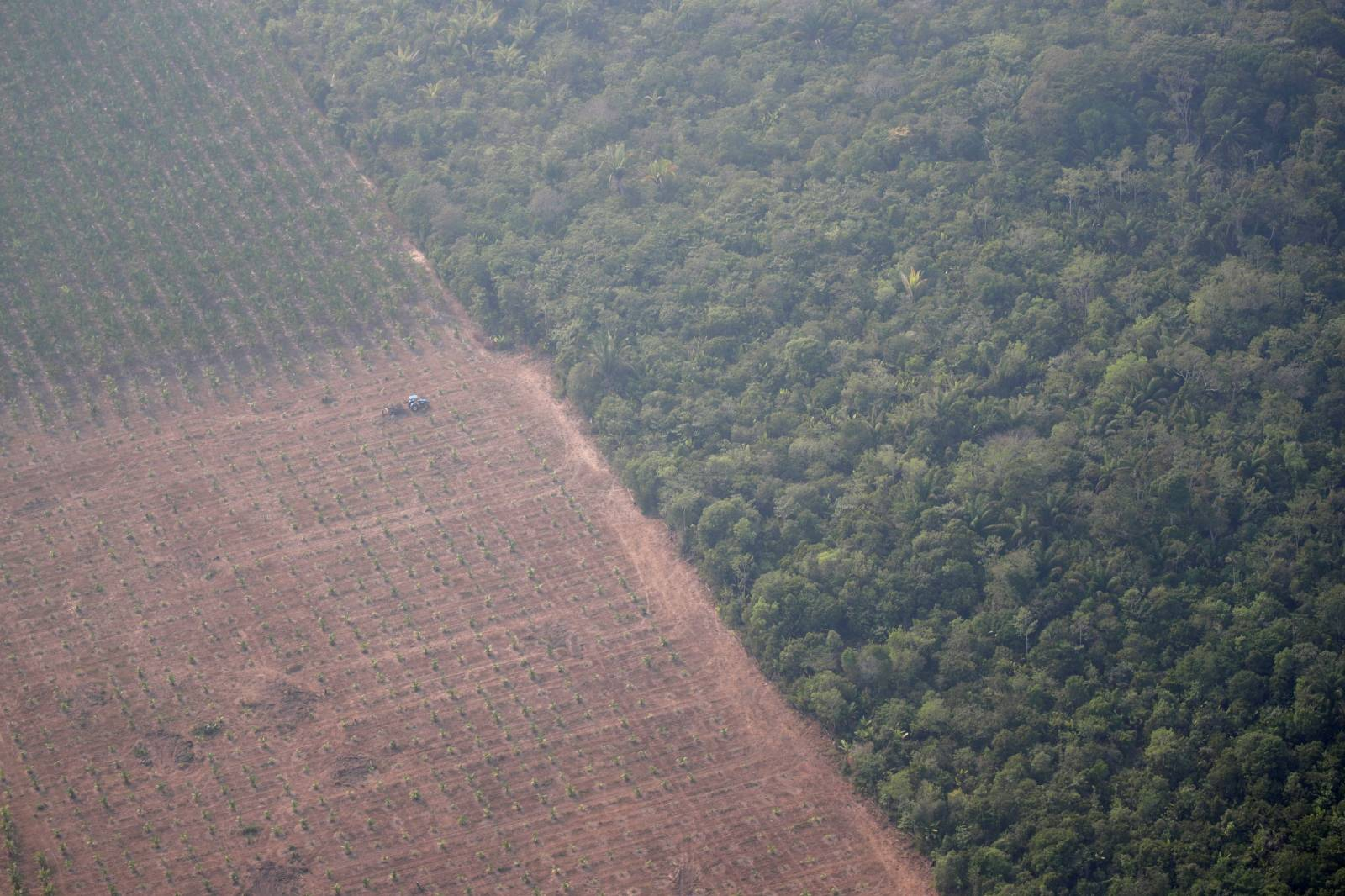 An aerial view shows a tractor on a plantation near a deforested plot of the Amazon near Porto Velho