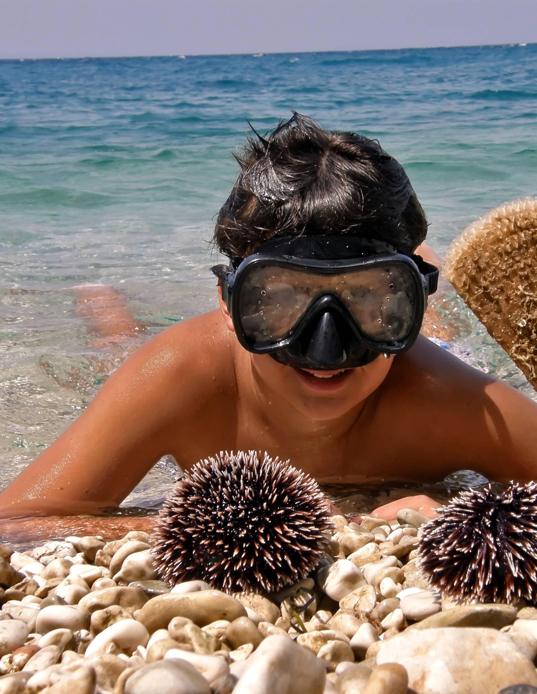 Prva pomoć kod ljetnih uboda: Meduza i vlasulja idu s octom