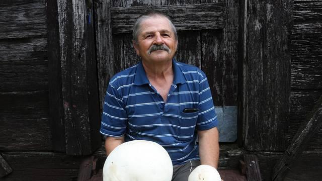 U voćnjaku pronašao gljivu veliku kao nogometna lopta