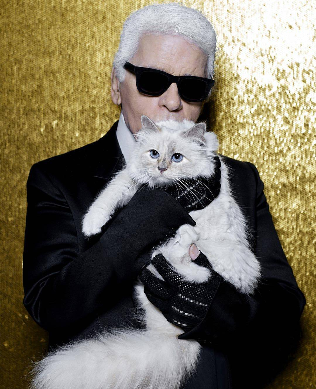 Velika ljubav dizajnera i mačka: 'Da mogu, oženio bih se za nju'