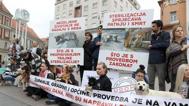 Zagreb: Prijatelji životinja upozorili na godinu dana Zakona o zaštiti životinja