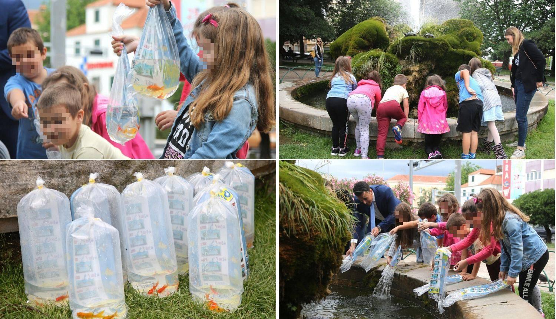 Kornjače u poznatoj šibenskoj fontani dobile društvo - 18 ribica