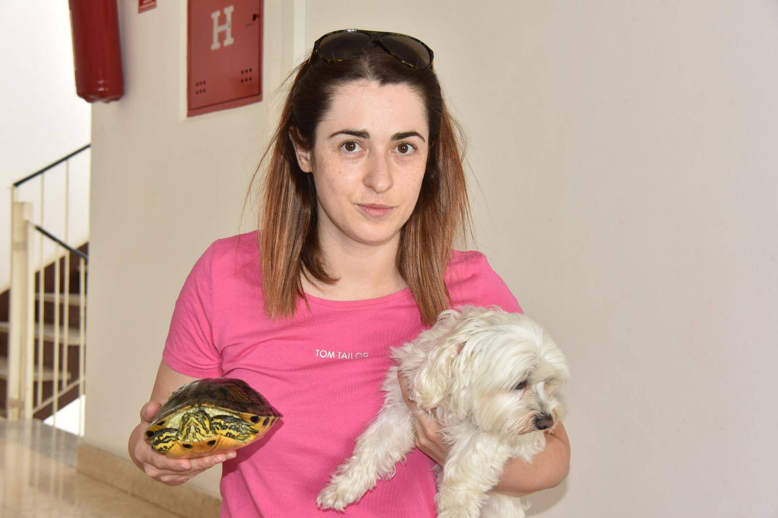 Žedna i gladna satima u torbi: Šetala psa i pronašla kornjaču