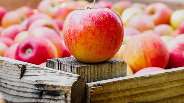 Jedna je jabuka na dan zdrava - no je li baš zdravo pojesti tri?