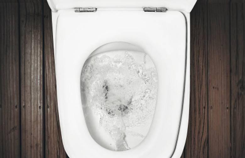 Rizik od zaraze koronom prijeti i od ispiranja vode na WC školjci?