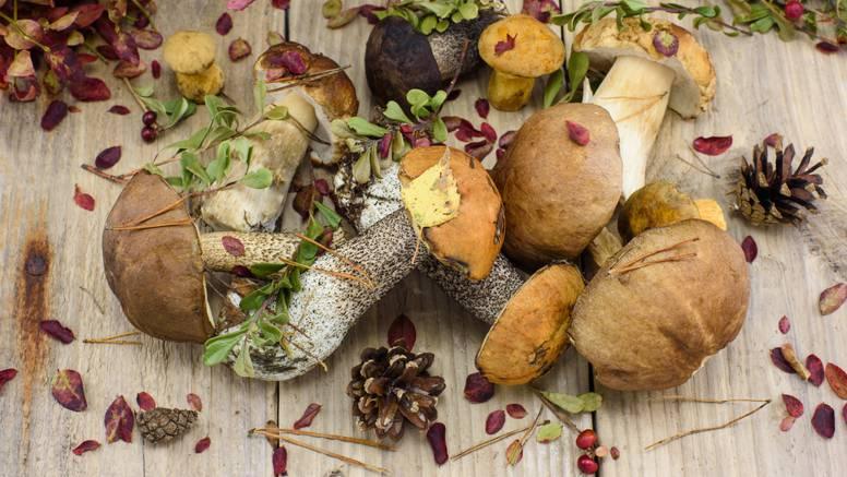 Uvrstite ih jelovnik: 6 dobrobiti gljiva za cjelokupno zdravlje
