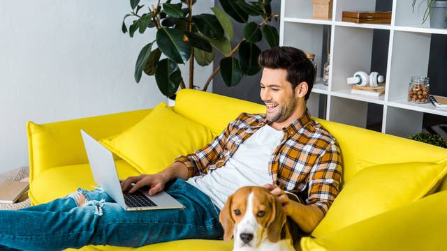 handsome laughing man using laptop on sofa with beagle dog