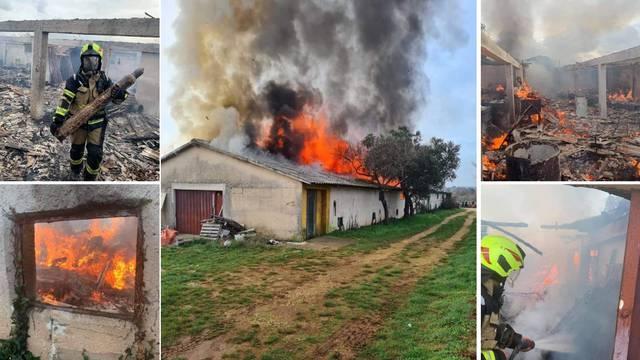 Kod Rovinja netko je namjerno zapalio staru farmu pilića koja je u potpunosti izgorjela
