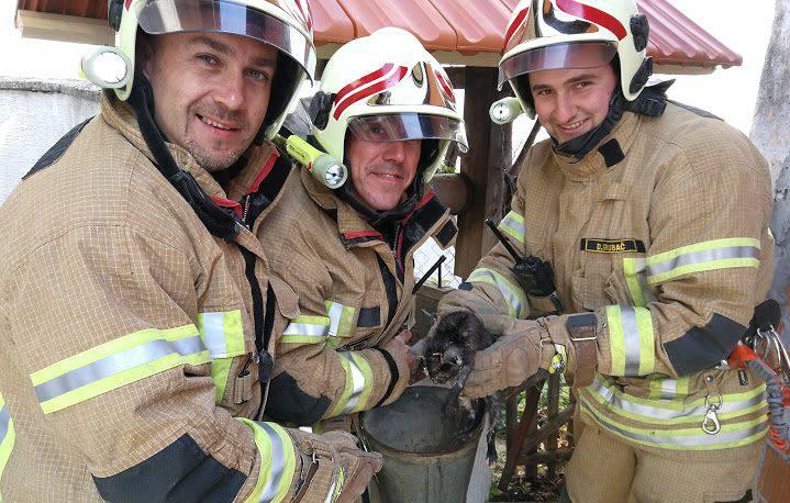 Brzi vatrogasci iz Virovitice spasili su mačića iz bunara