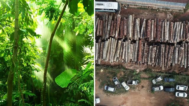Surova realnost: Uništavanje amazonske prašume ubrzava se već drugi mjesec za redom