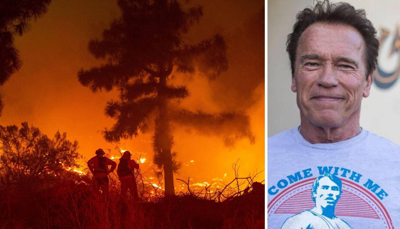 Arnie bježi od požara: Jako je opasno, uzmite stvari i idite!