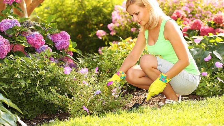 Rad u vrtu pridonosi boljem raspoloženju te liječi depresiju