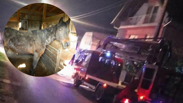 Njegovi konji šokirali Hrvatsku, a sada mu se zapalila radionica