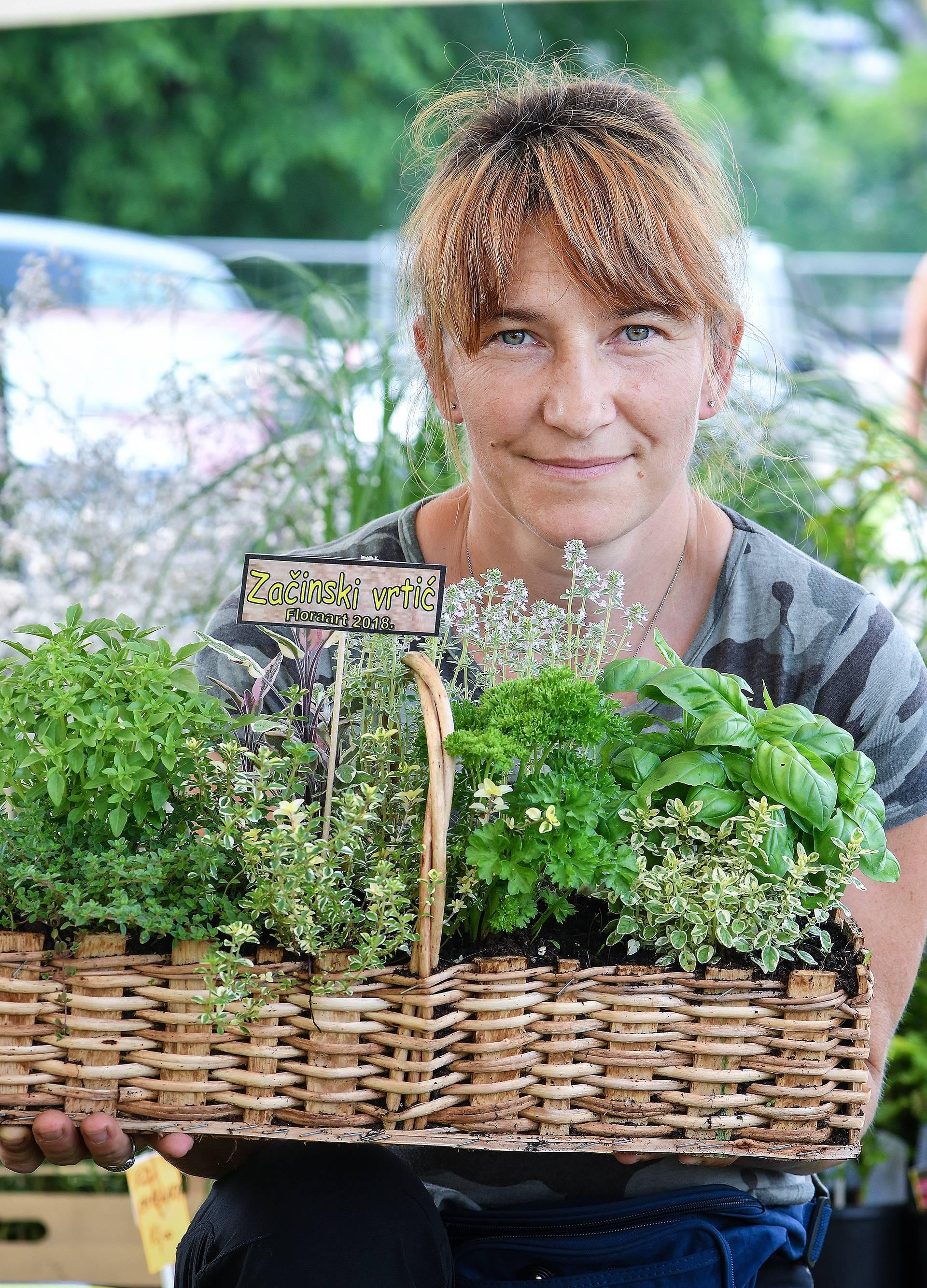 Floraart: Sadnice cvijeća od 2 kune, a za 25 mini vrt u posudi