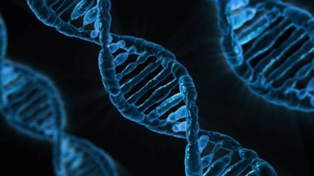 Izvor za nova otkrića: Genetski će mapirati sav život na Zemlji