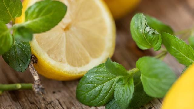 Jamnica Botanica donosi čistu prirodu u vaš dom u spoju sočnog voća i aromatičnog bilja