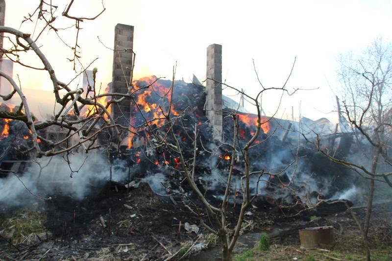 Staja izgorjela, krov se urušio: U zadnji tren spasili životinje