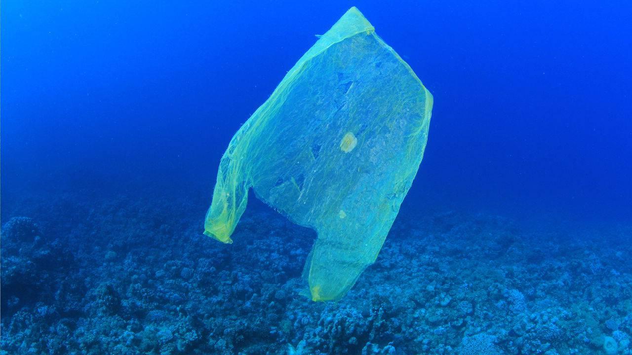 Istraživač u Marijanskoj brazdi pronašao je i plastične vrećice