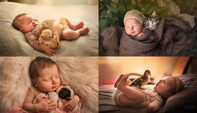 Preslatke fotografije: Životinje i bebe mogu vam uljepšati dan
