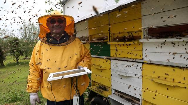 'Vražji hobi': Radim kreme od pčelinjeg otrova protiv bora