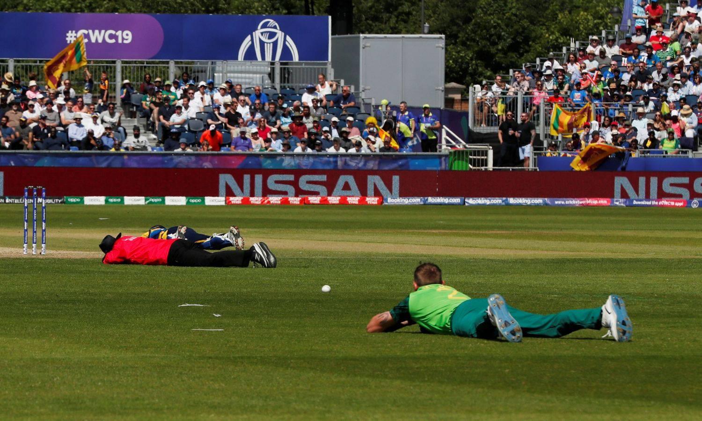Pčele prekinule Svjetski kup u kriketu, igrači se bacali na tlo