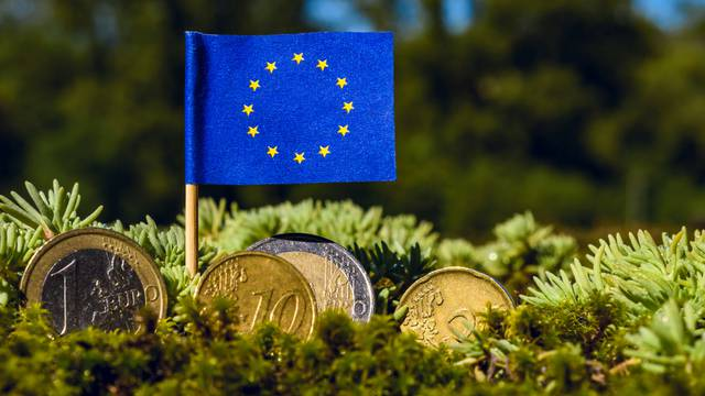 European,Union,Flag,With,Euro,Coins,Amid,Moss,recovery,Fund,Business,finance