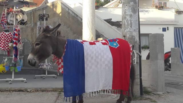 I magarica slavi: U kafiću ju ukrasili hrvatskom zastavom