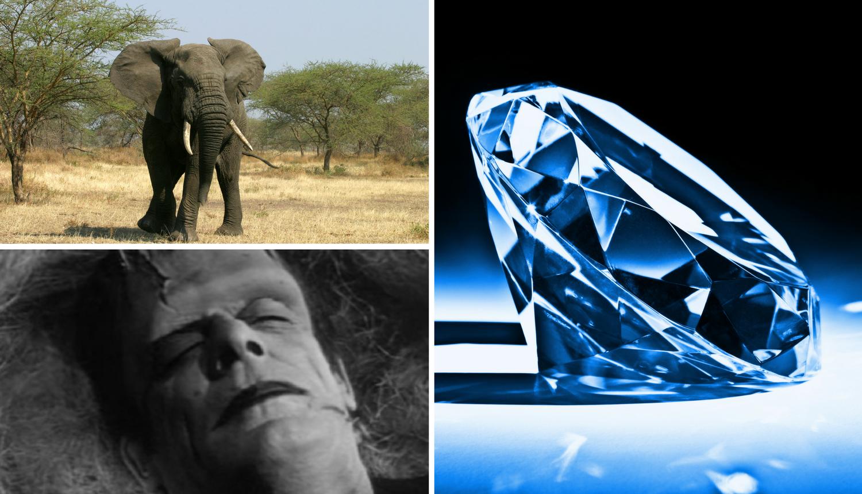 25 genijalnih činjenica o svijetu oko nas za koje mnogi ne znaju