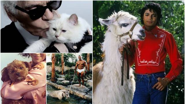 Jackson vodio ljamu u studio, a Karl mački ostavio milijune...