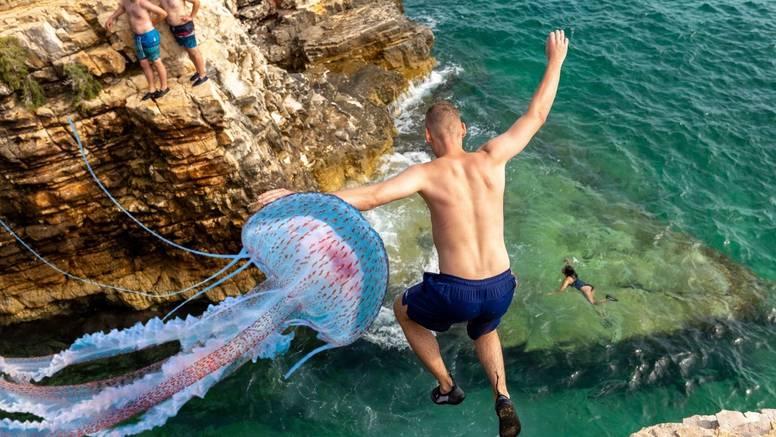 Na jugu Istre pojavila se opasna meduza: Ostavlja ožiljke, evo što napraviti ako vas opeče