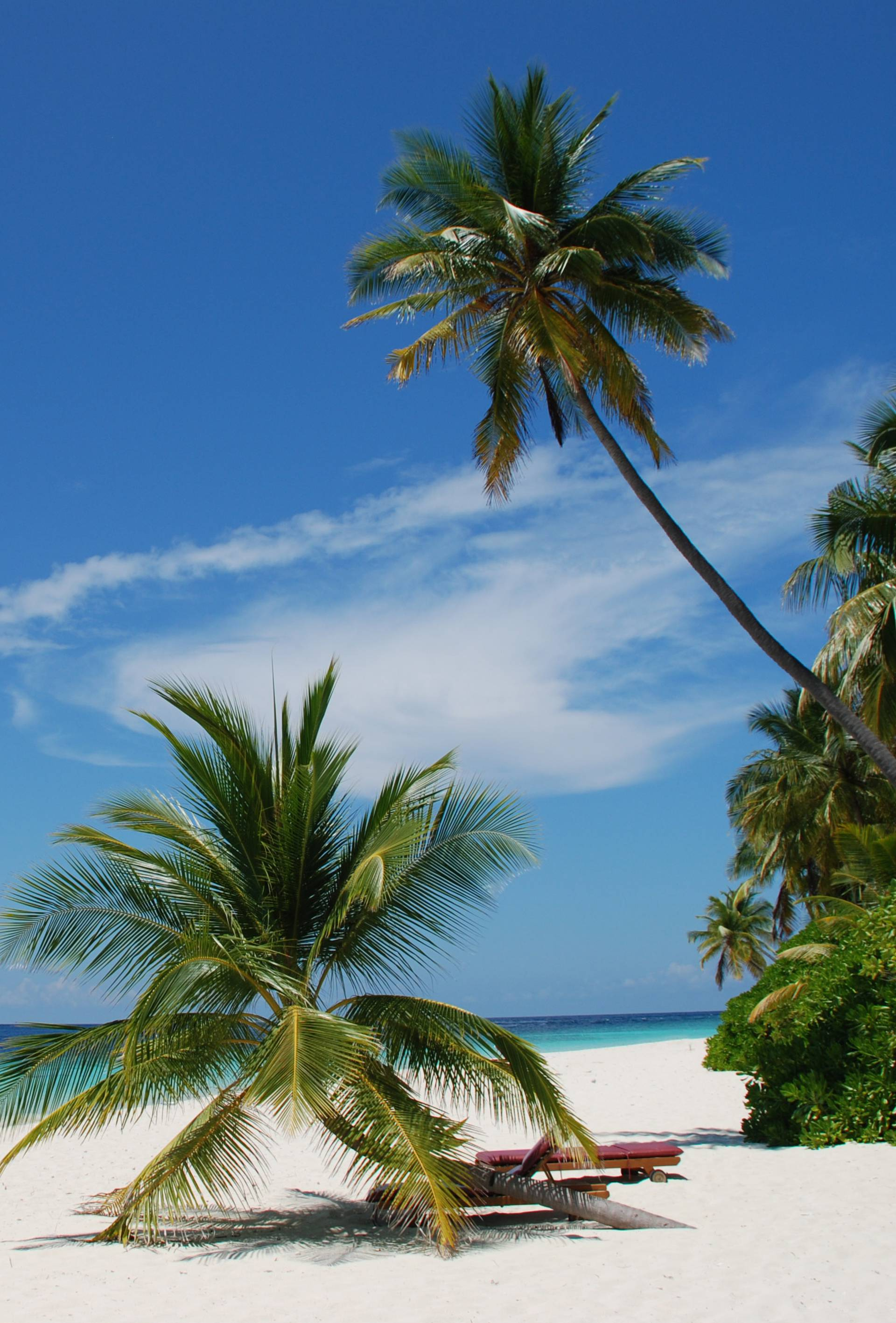 Preselite svoj kućni ured na Maldive: Sedam noćenja za dvoje ljudi iznosi 15.000 kuna