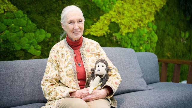 Visite de Jane Goodall  a Paris