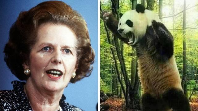 Čelična Lady se bojala pandi: 'One i političari nose nesreću'