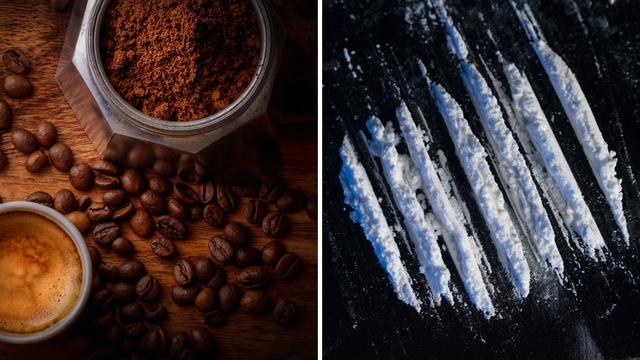Nizozemci zaplijenili 1300 kg kokaina, bio sakriven u kavi...