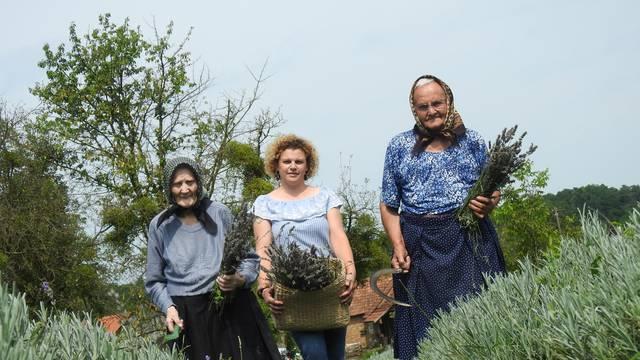 Bake skupa imaju 178 godina, ali još brinu o poljima lavande