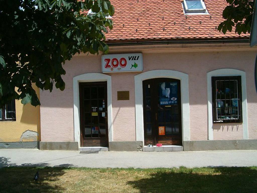 Zoo Vili