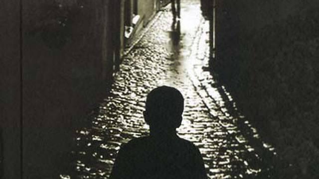 'Treće lice jednine': Knjiga nije samo roman nego i dragulj...