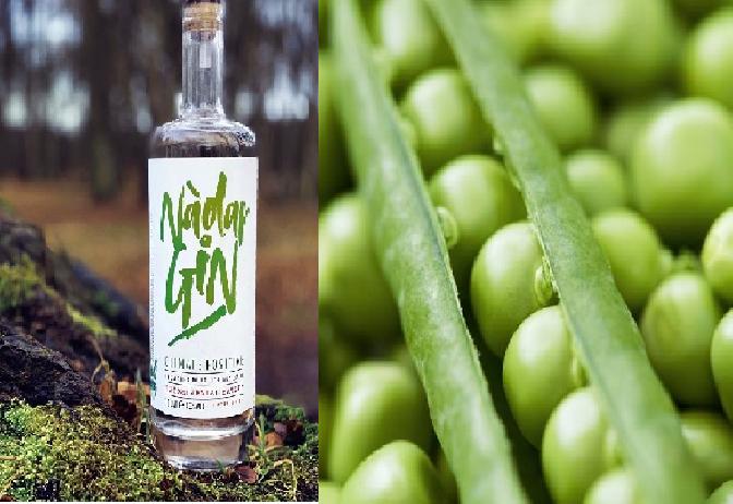 Proizveli su ekološki prihvatljiv gin - napravljen je od graška!