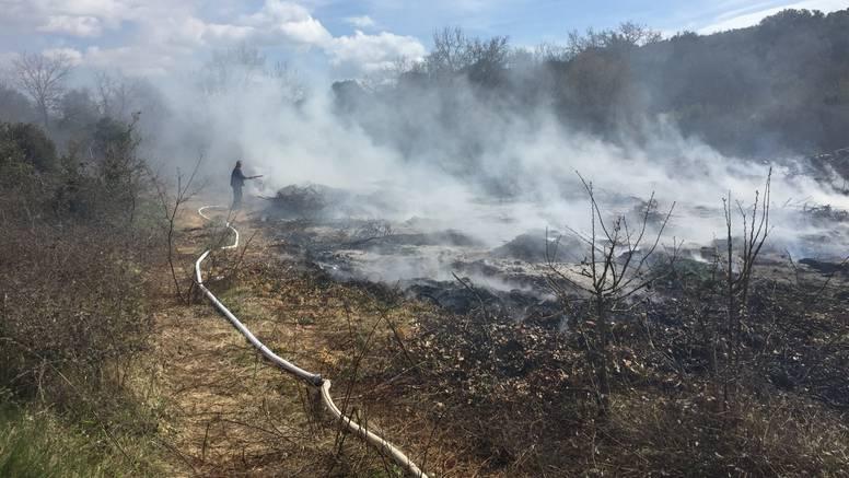 Bacio opušak pa zapalio travu i kamion - izgorio drveni teret