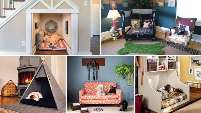 20 ideja kako urediti kutak za psa - da bude praktično i lijepo