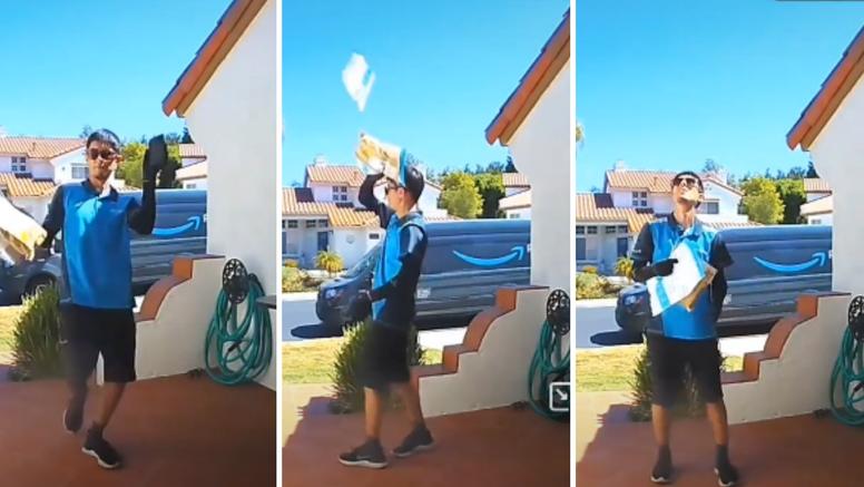 Neobična isporuka: Dostavljač tjerao kukce od sebe, paket mu slučajno odletio na krov kuće