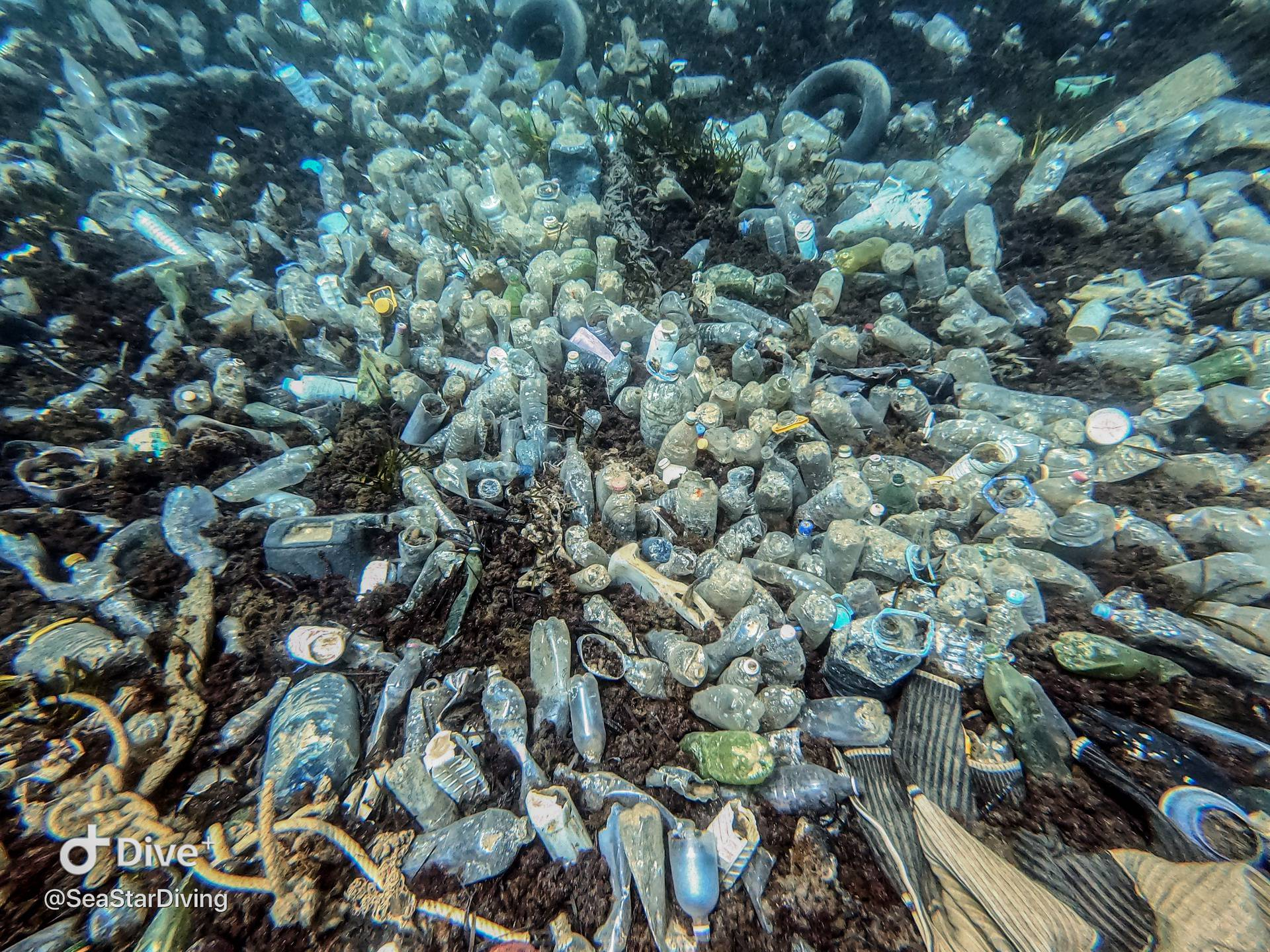 Na Pelješcu još jedna eko akcija čišćenja podmorja 'Think Green'