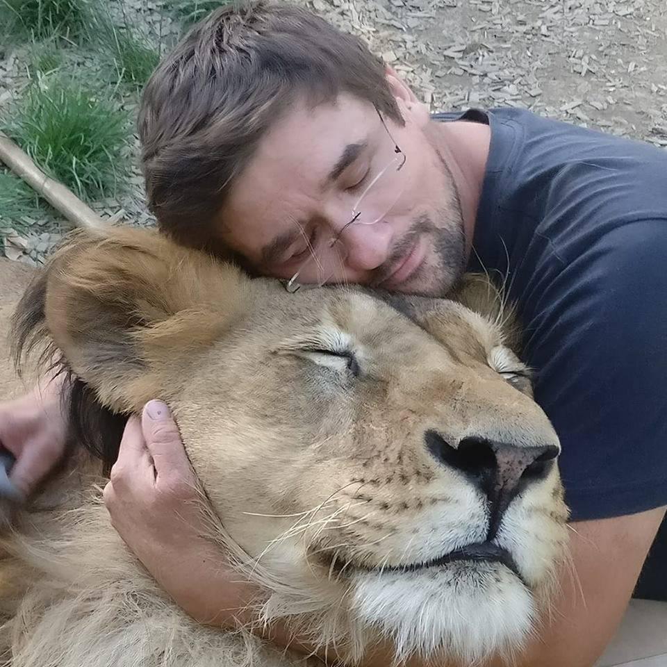Čeha koji je lavove šetao na uzici ubio njegov ljubimac Fufik