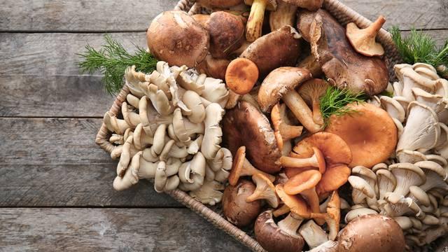 Sezona gljiva: Znate li kako ih pripremati i skladištiti?