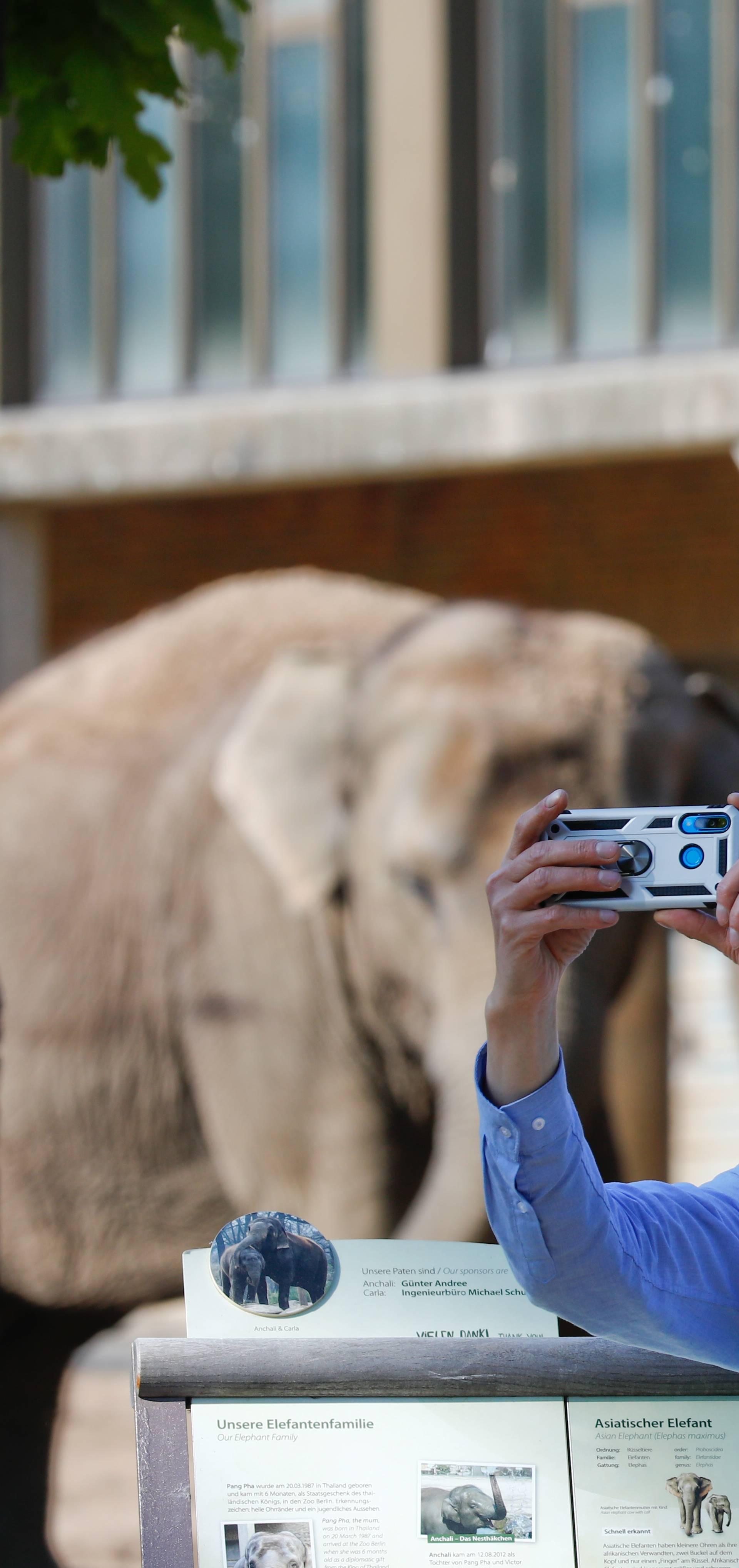 Životinje u zoološkim vrtovima usamljene su bez posjetitelja