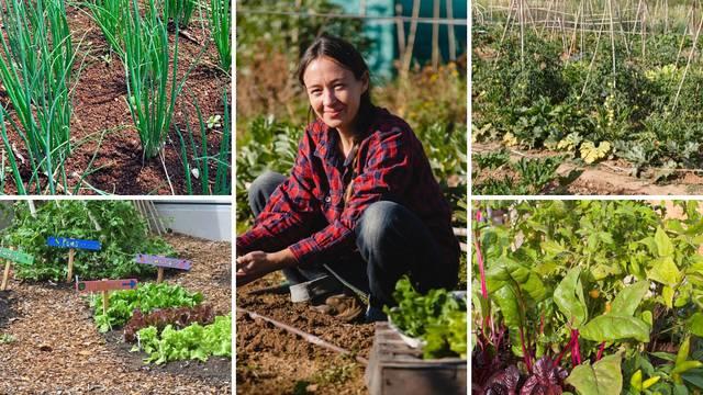 Dobri i loši susjedi: Pazite koje povrće sadite jedno kraj drugog